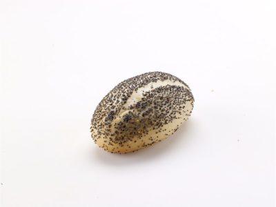 Παπαρουνόσπορο